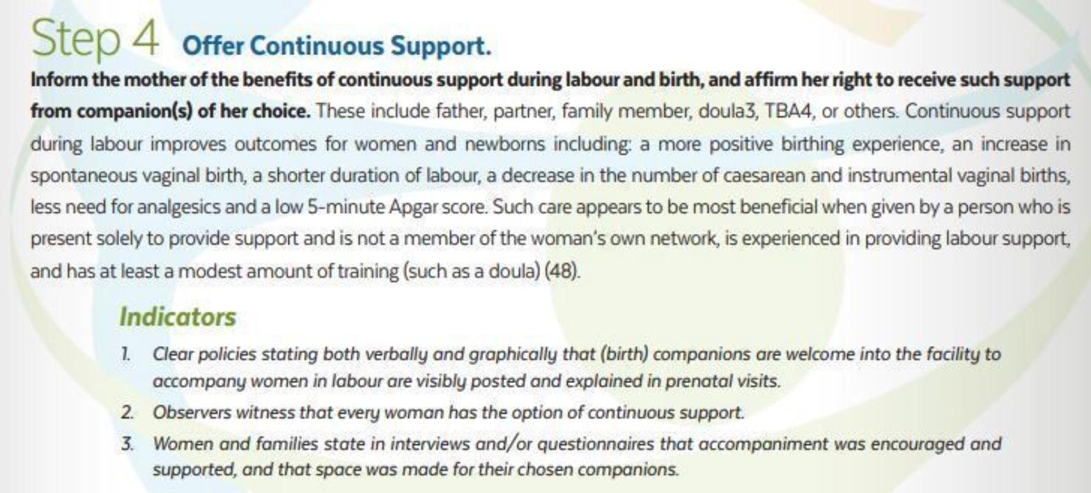 """Die neue weltweite Initiative """"12 Schritte zur MutterBaby-freundlichen Versorgung in der Geburtshilfe"""
